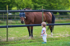 Adorable little baby girl with horse on farm in summ Royalty Free Stock Images