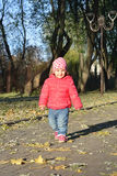 Adorable little baby girl walking in the autumn park Royalty Free Stock Images