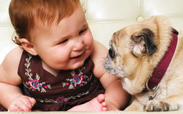 Adorable little baby sitting with pug dog Stock Images