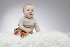 Adorable little baby sitting on the white blanket and looking up, studio shot, isolated on grey background Royalty Free Stock Photos