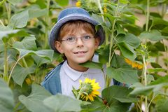 Adorable little blond kid boy with glasses and hat on summer sunflower field outdoors. Cute preschool child having fun royalty free stock photography