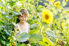 Adorable little blond kid boy on summer sunflower field outdoors. Cute preschool child having fun on warm summer evening. At sunset. Kids and nature stock photos