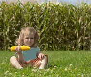 Adorable little blonde Caucasian girl is on the field and eating a corn. The stalks of cor royalty free stock photo