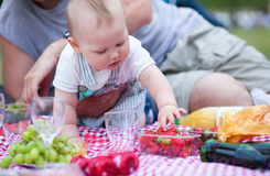 Adorable little boy on his first picnic Royalty Free Stock Images