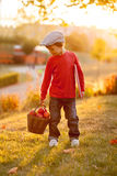 Adorable little boy with his teddy bear friend in the park on su Stock Images