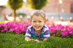 Adorable little boy lying among the flowers. Stock Images