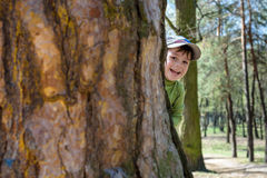 Adorable little boy playing hide and seek Royalty Free Stock Photo