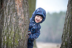 Adorable little boy playing hide and seek hiding behind a tree trunk in the green autumn park forest. Royalty Free Stock Image