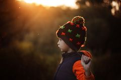 Adorable little boy in warm hat in evening autumn day. Adorable little boy in warm hat in evening autumn day royalty free stock image