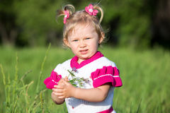 Adorable little child girl on grass on meadow. Stock Photography