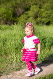 Adorable little child girl on grass on meadow. Summer green nature background. Royalty Free Stock Images