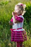 Adorable little child girl on grass on meadow. Summer green nature background. Stock Images