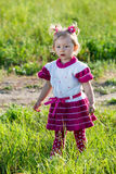 Adorable little child girl on grass on meadow. Summer green nature background. Royalty Free Stock Image