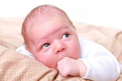 Adorable little child is looking above Stock Images