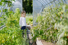 Adorable little gardener at greenhouse Royalty Free Stock Photo