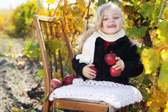 Adorable little girl with apples, autumn time Royalty Free Stock Image