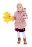 Adorable little girl in autumn clothes holding a Stock Image
