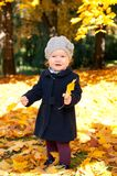 Adorable little girl with autumn leaves in the beauty park Stock Photos
