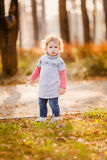 Adorable little girl with autumn leaves Stock Image
