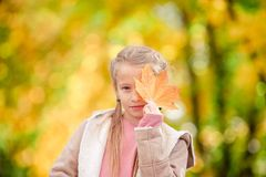 Adorable little girl at beautiful autumn day outdoors stock image
