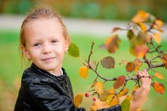 Portrait of adorable little girl with yellow and orange leaves bouquet outdoors at beautiful autumn day Stock Images