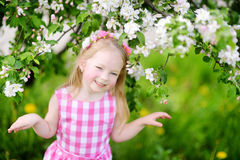 Adorable little girl in blooming apple tree garden on beautiful spring day Stock Images