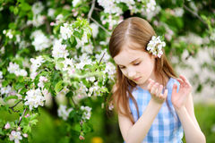Adorable little girl in blooming apple tree garden on spring day Royalty Free Stock Photography