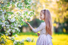 Adorable little girl in blooming apple tree garden on spring day Stock Photo