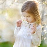 Adorable little girl in blooming cherry garden Stock Image