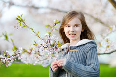 Adorable little girl in blooming cherry garden Stock Photo