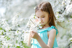 Adorable little girl in blooming cherry garden Stock Images