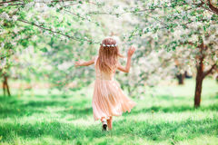 Adorable little girl in blooming cherry tree garden outdoors Stock Image
