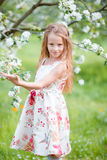 Adorable little girl in blooming cherry tree garden on spring day Stock Images