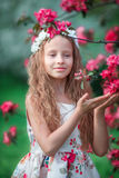 Adorable little girl in blooming spring apple garden outdoors Royalty Free Stock Images