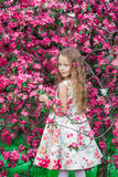 Adorable little girl in blooming spring apple garden outdoors Royalty Free Stock Photo
