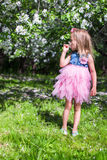 Adorable little girl in blossoming apple orchard. Little adorable girls with butterfly wings under blossoming apple tree Stock Photography