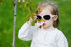 Adorable little girl with blossoming tree Stock Photos