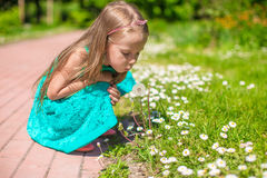 Adorable little girl blowing a dandelion in the Royalty Free Stock Image