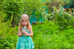 Adorable little girl blowing a dandelion in the Royalty Free Stock Images
