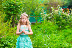 Adorable little girl blowing a dandelion in the Stock Photography