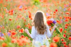 Adorable little girl with a bouquet of wildflowers with hands sp royalty free stock photos