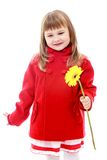 Adorable little girl bright red autumn coat Royalty Free Stock Photos