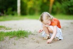 Adorable little girl catching little babyfrogs Royalty Free Stock Photography