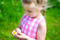 Adorable little girl with daisy on summer day. Adorable little girl with daisy on sunny summer day Stock Image