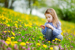 Adorable little girl in dandelion flowers. Adorable little girl in blooming dandelion flowers royalty free stock photo