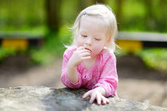 Adorable little girl eating a cookie Stock Photography