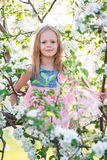 Adorable little girl enjoying spring day in apple blooming garden Stock Image