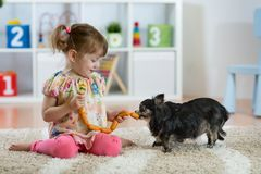 Adorable little girl feeding cute dog stock images
