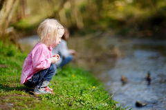 Adorable little girl feeding ducks Royalty Free Stock Photos