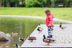 Adorable little girl feeding ducks at summer Royalty Free Stock Photography